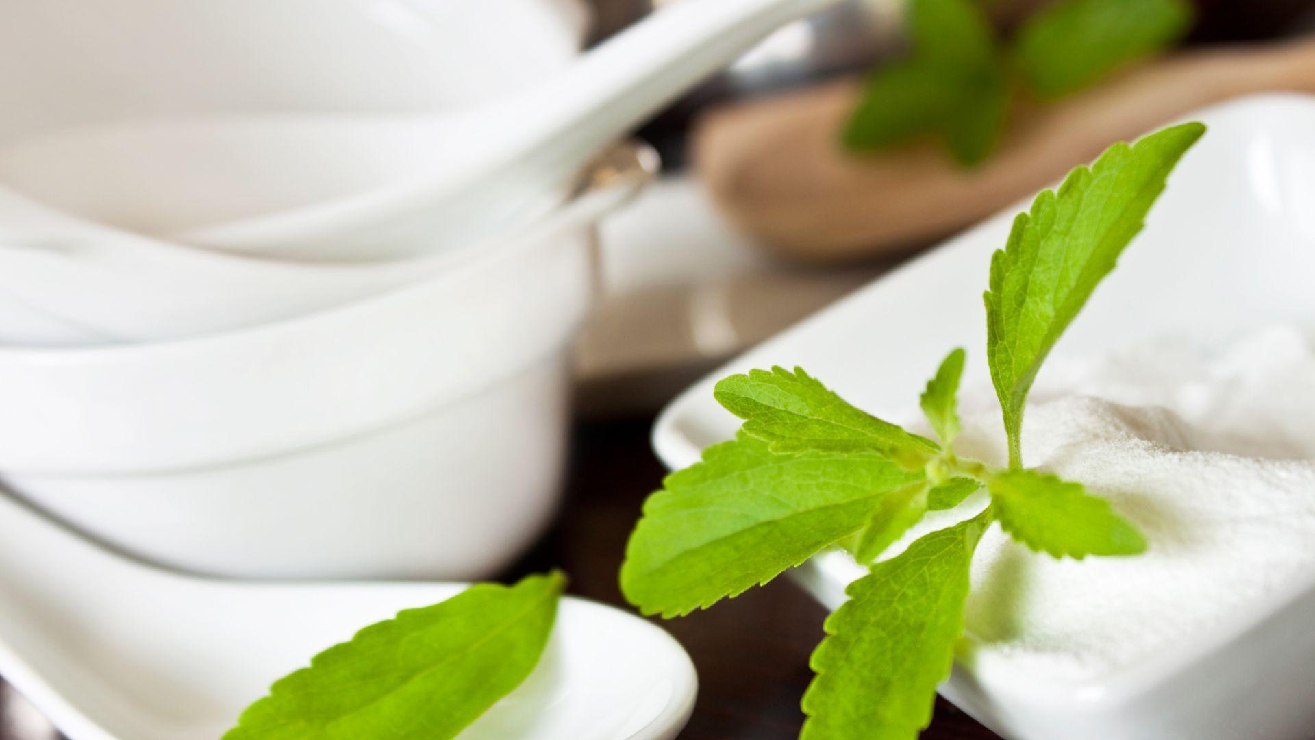 Rebaudioside A (Stevia) 97% Powder